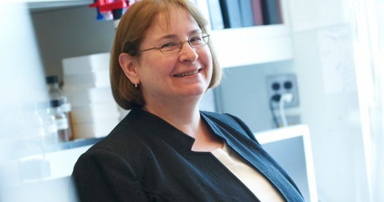 Connell Lecture Series: Dr. Maria Jasin