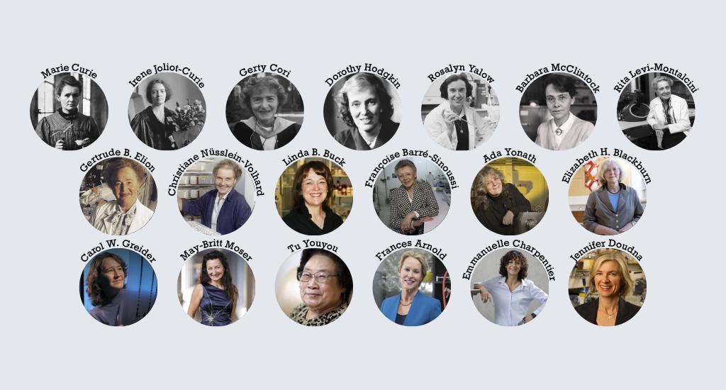 Ladies Who Lab – Female Nobel winners in Chemistry and Medicine