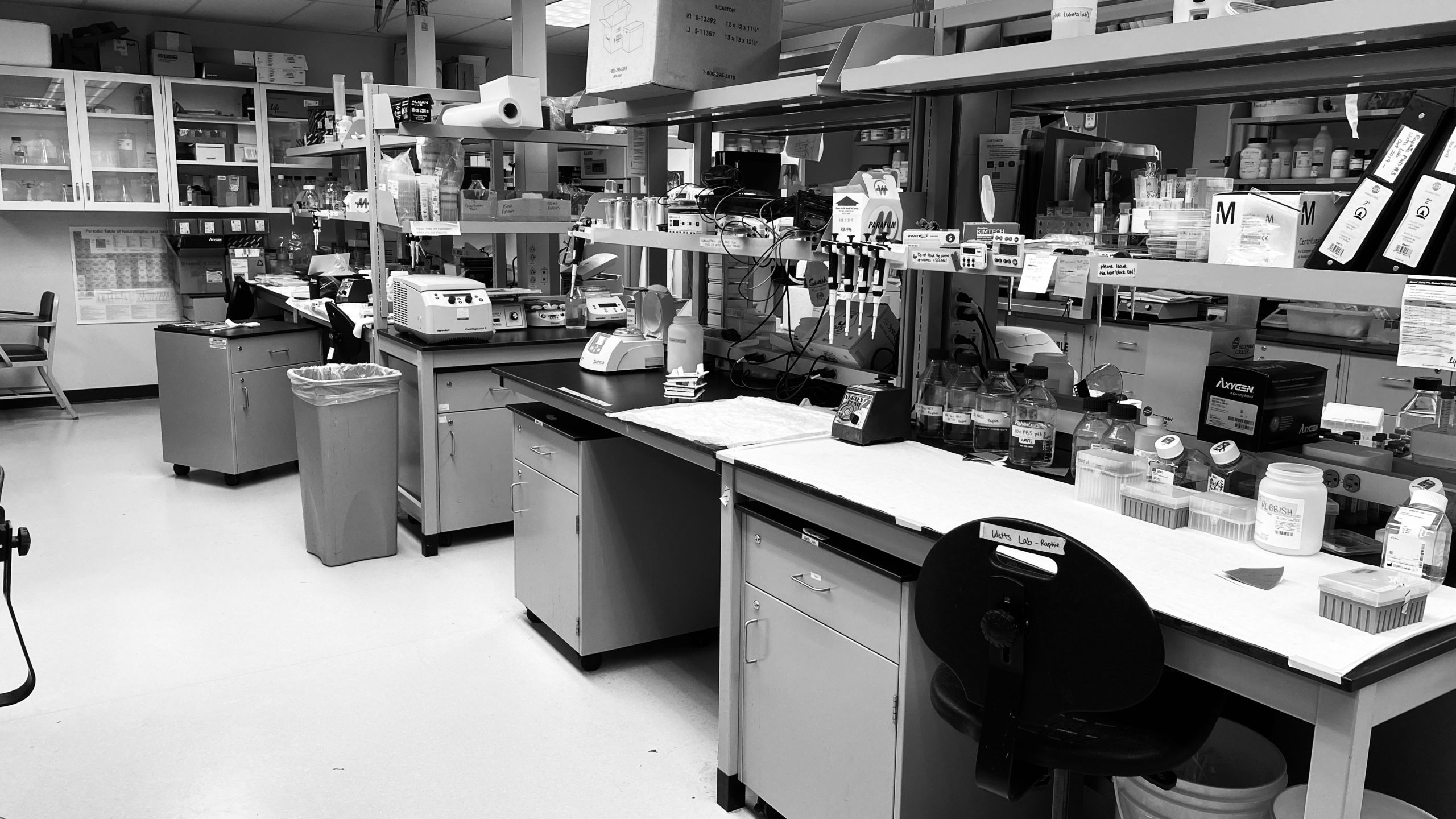 Black-and-white photo of an empty Watts lab at 9 am.